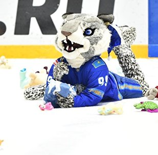Мишкопад после матча Барыс-Адмирал