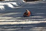 Зимние забавы животных - видео