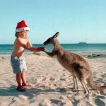 Австралияда кішкентай қыз кенгурумен бірге.