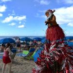 Гавай аралдарындағы рождество шыршасы.