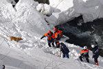 Спасатели МЧС России на ликвидации последствий схода лавины, архивное фото