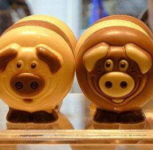 Конфеты в виде свинки