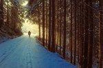 Силуэт на фоне зимней природы, иллюстративное фото