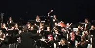 Музыкант бил в литавры и чуть не убил партнершу по оркестру - видео