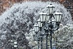 Уличные фонари, занесенные снегом