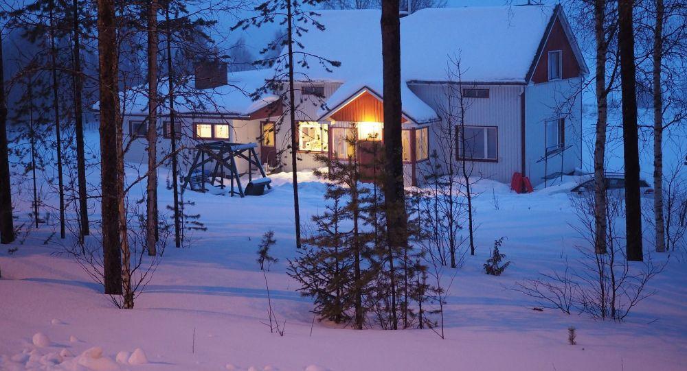 Вид на ночной лесной пейзаж Финляндии