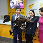 Пресс-конференция с участием всемирно известной казашки-беркутчи Айшолпан Нургайыпкызы и победителей XV Международной Жаутыковской олимпиады