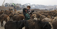 Афганистан, дети