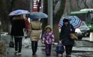 Гололед в Алматы