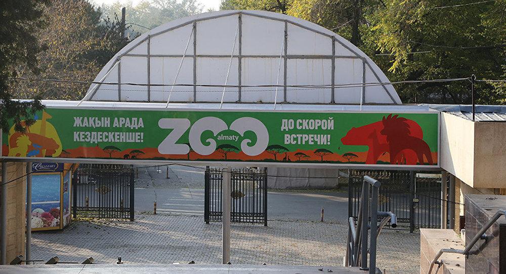 Канат Каримов уходит споста директора алматинского зоопарка