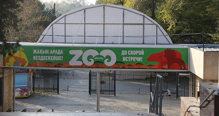 Архивное фото зоопарка