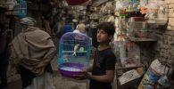 Кабул базарындағы жасөспірім, көрнекі фото
