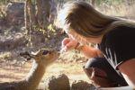 Девушка спасает диких животных в Зимбабве