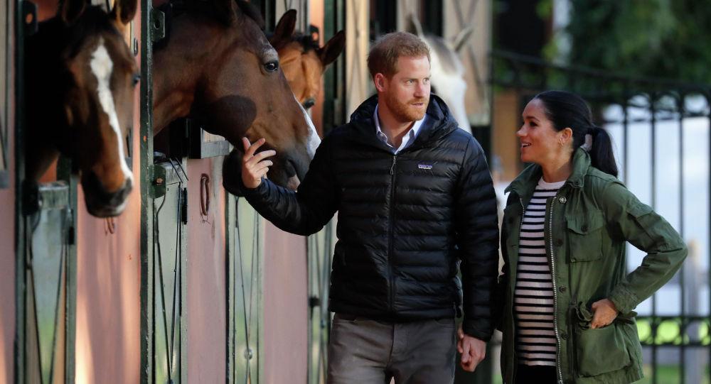 Принц Гарри и герцогиня Меган
