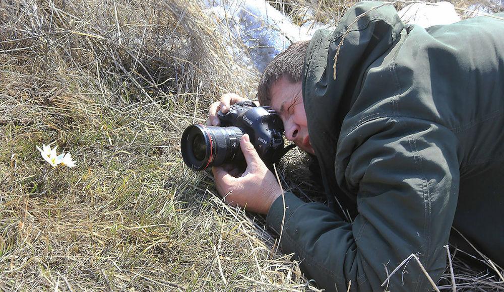 Мужчина фотографирует подснежники