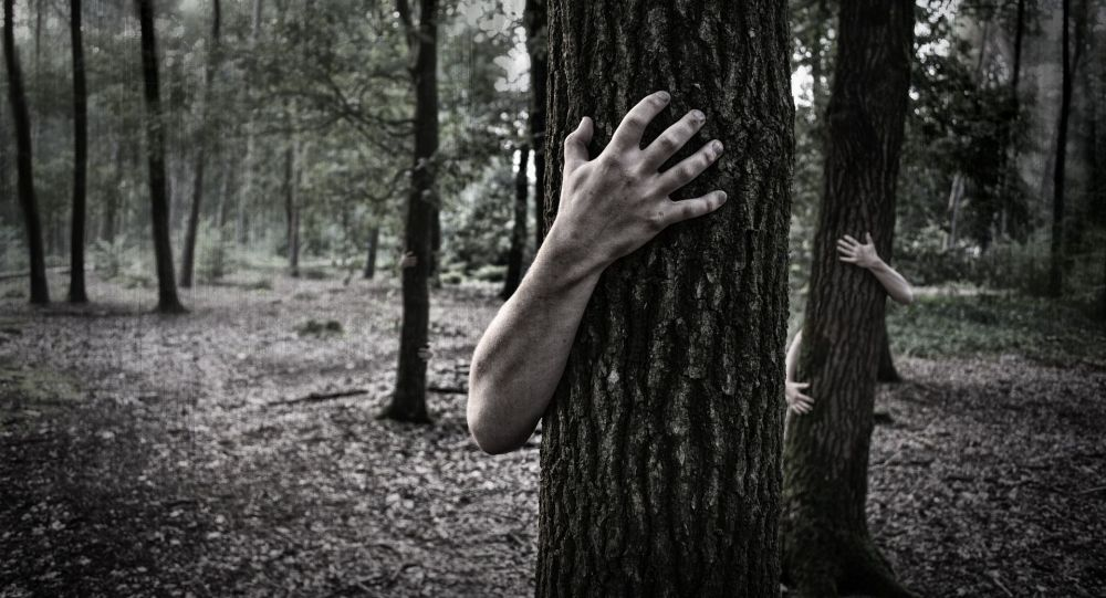 Руки человека обнимают ствол дерева, иллюстративное фото