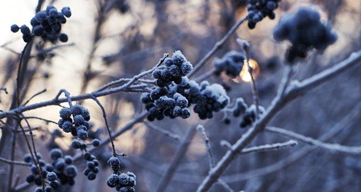 Архивное фото зимней погоды