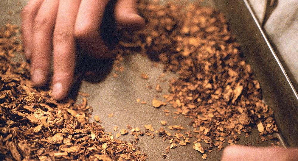 Добыча золота. Архивное фото