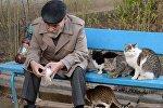 Пожилой мужчина кормит голубей в парке, архивное фото