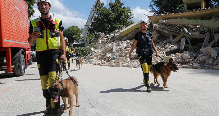 Спасатели с собаками после землетрясения в Италии