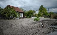 Деревня, село, дом, архивное фото