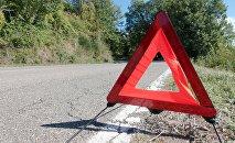 Предупреждающий знак на дороге. Архивное фото