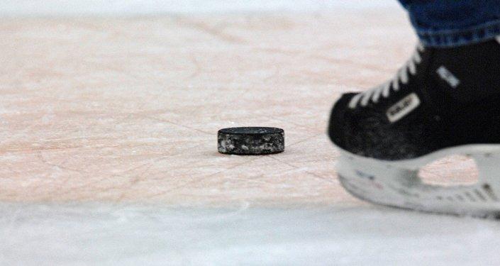 Хоккей, шайба