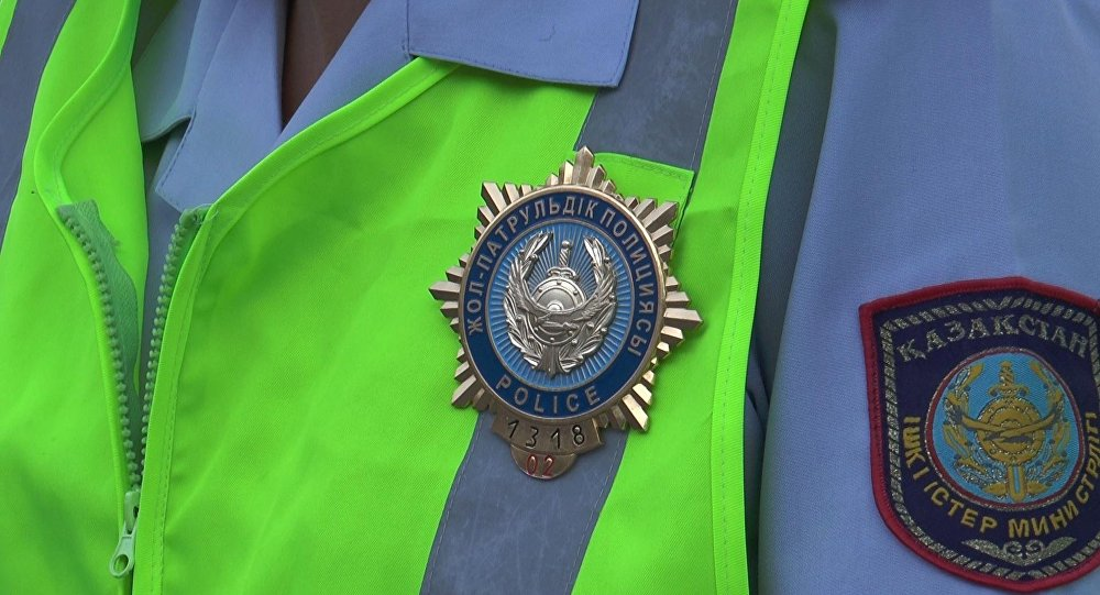 Дорожно-патрульная полиция