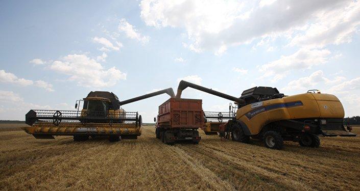 поле комбайн урожай зерно пшеница