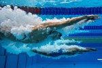 Пловец на соревнованиях по заплыву, иллюстративное фото