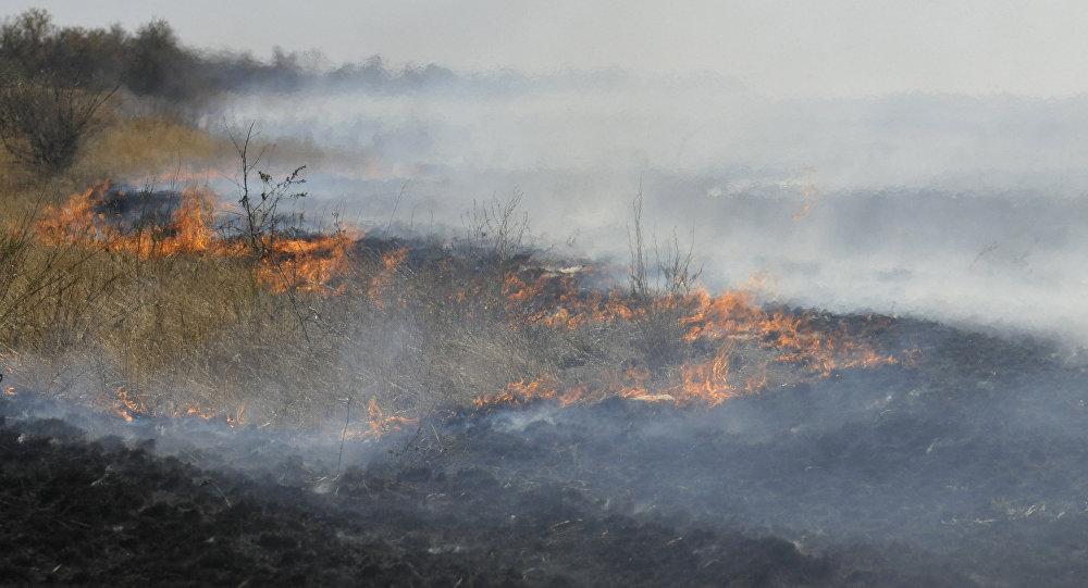 Степной пожар, архивное фото
